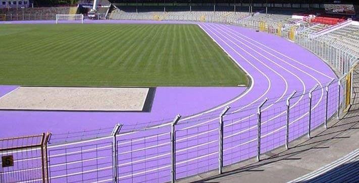 purple-track